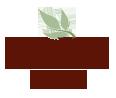 truetea.com.ua - Интернет магазин чая